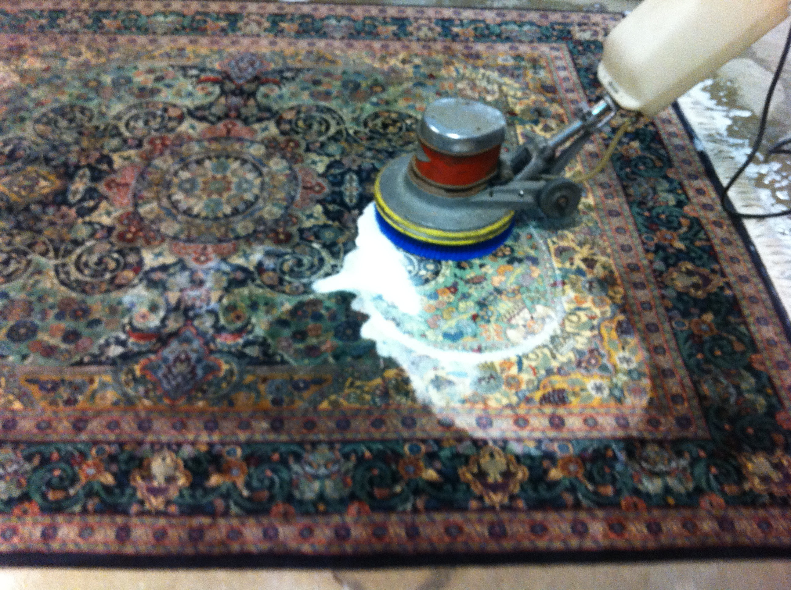 Carpet Cleaning Pensacola How To 28 Images Gulf Coast