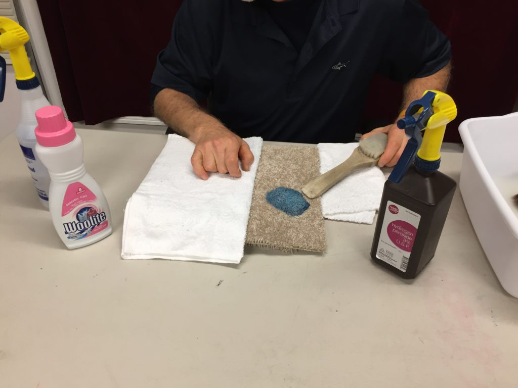 How To Remove Crusty Slime From Carpeting